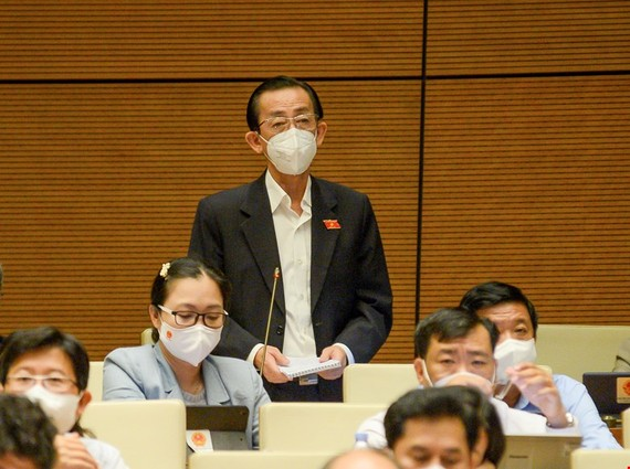 Đại biểu Trần Hoàng Ngân (TPHCM)
