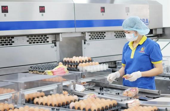 Nhà máy xử lý và chế biến trứng gia cầm công nghệ cao của công ty Ba Huân do Vietcombank cho vay vốn phát triển sản xuất kinh doanh