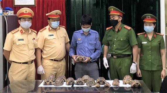 Số rùa bị thu giữ tại đồn công an