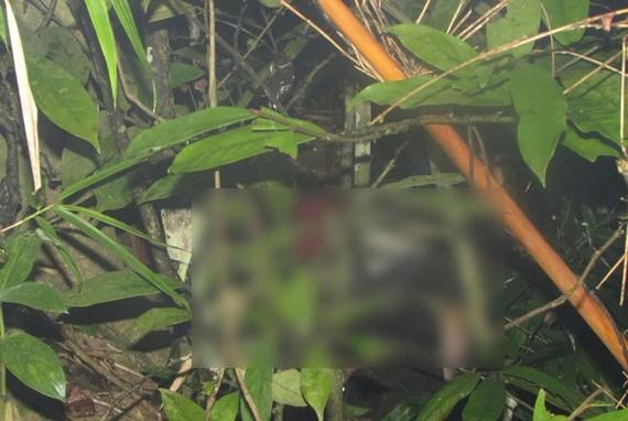 Thi thể nữ sinh mất tích được phát hiện trên đồi Lăng Âm. ảnh: B.H