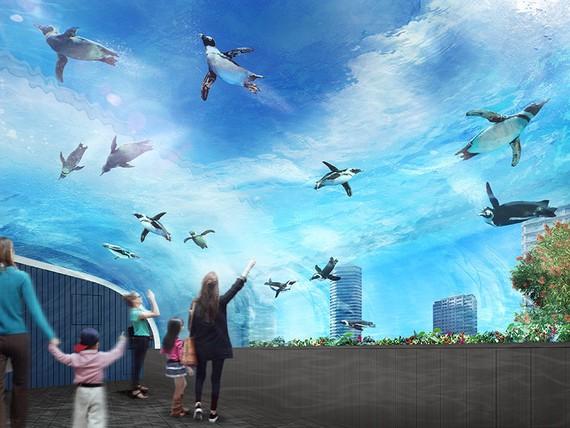 『讓企鵝飛上天空』展覽(圖片來源:互聯網)
