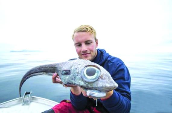 這條魚長著燈泡狀的大眼睛,形狀宛如外星生物,嚇了倫達爾一跳。