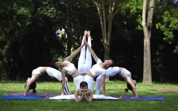 瑜伽運動日漸受到群眾喜愛。