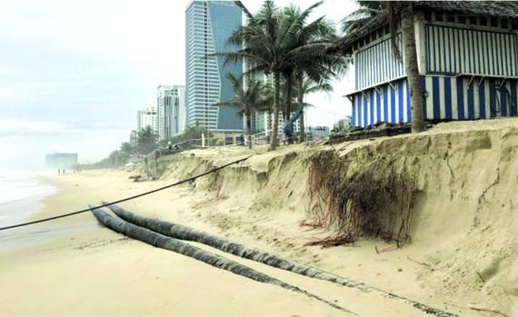 近半個月來,峴港市連接山茶郡和五行山郡的沿武元甲街海岸被海浪沖致嚴重坍塌。