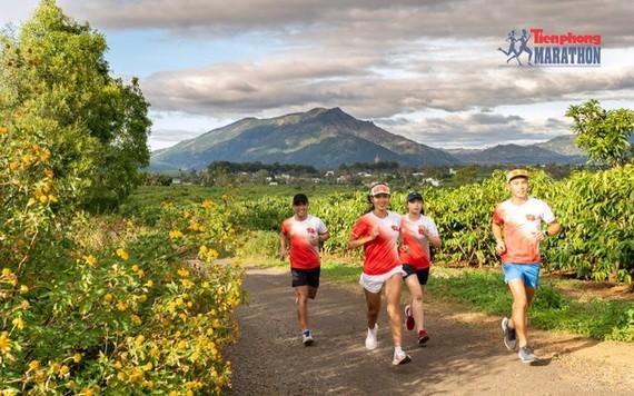 據2021年第六十二屆《前鋒報》國家長跑和馬拉松錦標賽組委會告知,《前鋒報》國家長跑和馬拉松錦標賽將於本月27-28日在嘉萊省波來古市舉行。