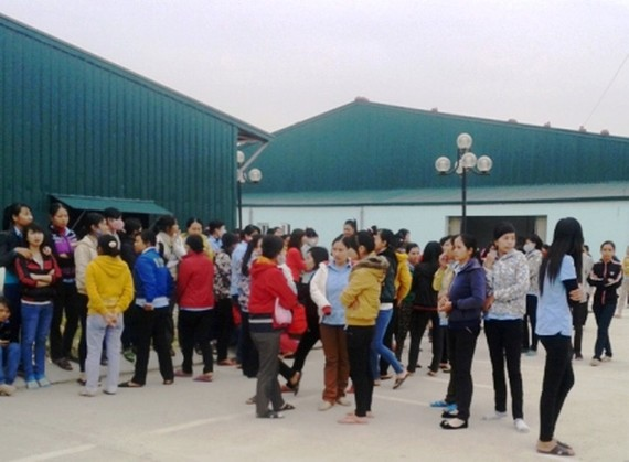 清化省上百工人罷工
