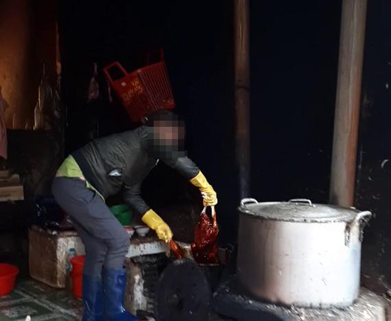Cơ sở dùng nhựa thông để nhổ lông vịt tại chợ Yên Thế