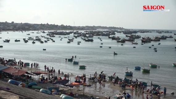 Chợ cá Phan Thiết - phiên chợ làng chài