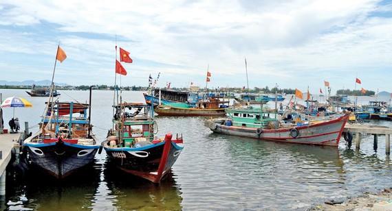 Luật thủy sản mới gây khó cho ngư dân miền Trung