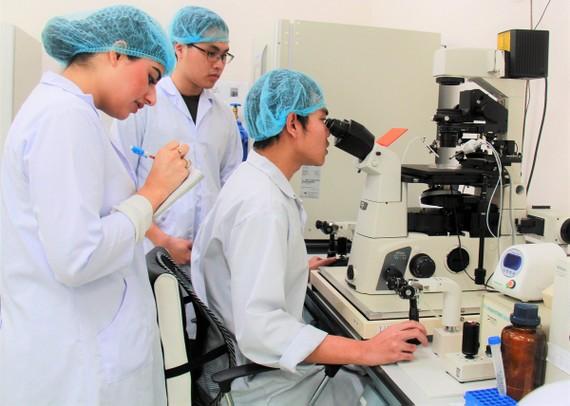 Sinh viên Trường ĐH Quốc tế (ĐH Quốc gia TPHCM) thực hành tại phòng thí nghiệm