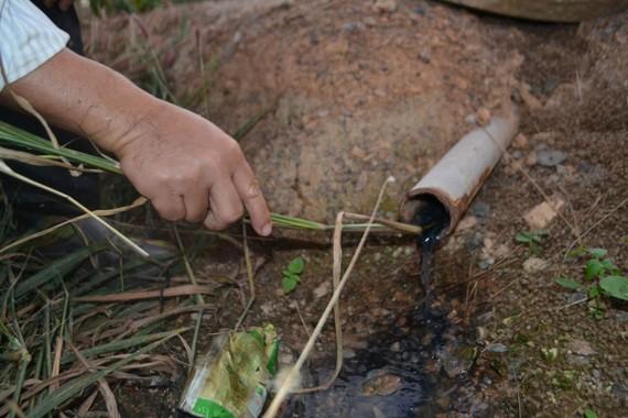 Trại heo Phước Thiện (huyện Bù Đốp, tỉnh Bình Phước) xả nước thải ra môi trường gây ô nhiễm