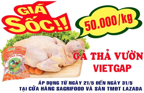 Giá Sốc Gà thả vườn VietGAP 50.000 đồng/kg