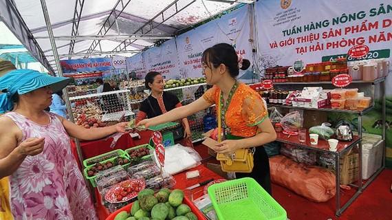 Hàng nông sản phía Bắc được Saigon Co.op hỗ trợ tiêu thụ