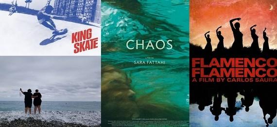 Một số phim tài liệu quốc tế được giới thiệu tại Tuần lễ phim tài liệu Châu Âu - Việt Nam lần thứ 10, năm 2019. Ảnh: GH