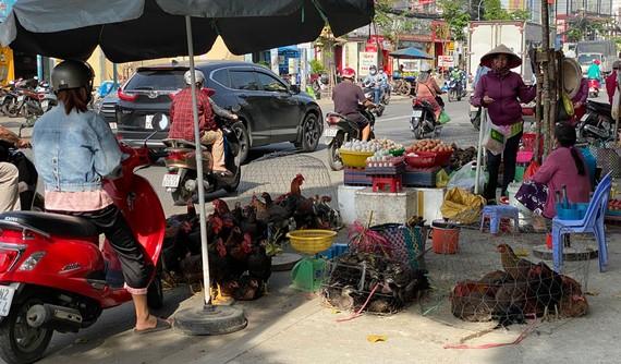Gia cầm bán trên lề đường Phạm Hùng (giáp ranh  giữa quận 8 và  huyện Bình Chánh). Ảnh: CAO THĂNG