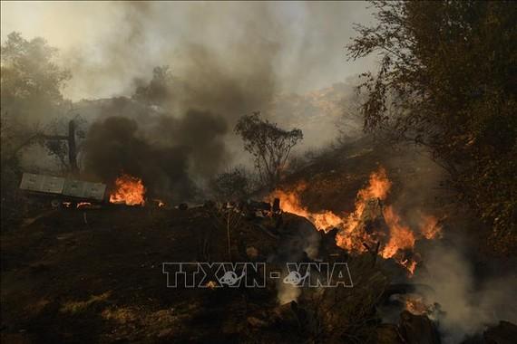 Cháy rừng tại California, Mỹ. Ảnh: AFP/TTXVN