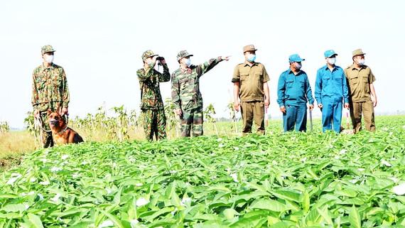 Tăng cường tuần tra kiểm soát chặt người qua lại tuyến biên giới An Giang từ nay đến Tết Tân Sửu