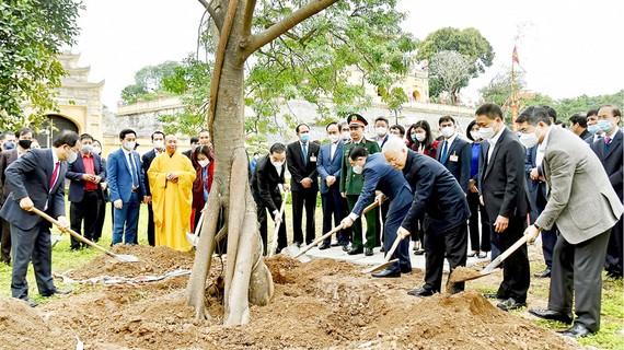 Tổng Bí thư, Chủ tịch nước Nguyễn Phú Trọng trồng cây lưu niệm tại Khu di tích Hoàng Thành Thăng Long. Ảnh: VIẾT CHUNG