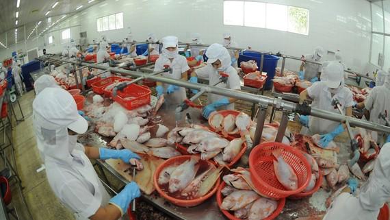 Chế biến thủy sản xuất khẩu tại Công ty APT, TPHCM. Ảnh: CAO THĂNG