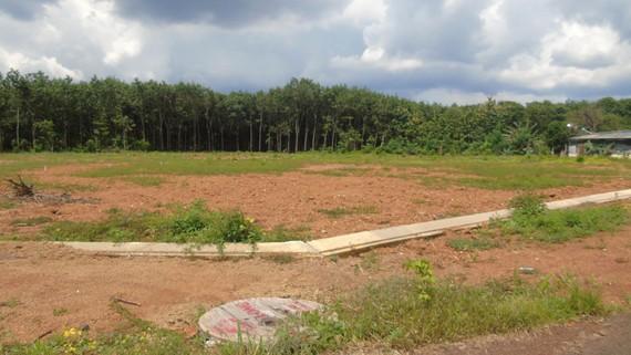 Dự án Tân Hưng Center ở Suối Da, xã Tân Hưng, huyện Đồng Phú chưa được cấp phép