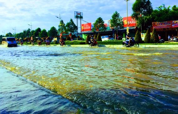 Đường Võ Văn Kiệt dẫn đến Sân bay Cần Thơ bị ngập nghiêm trọng trong những ngày đầu tháng 10-2019