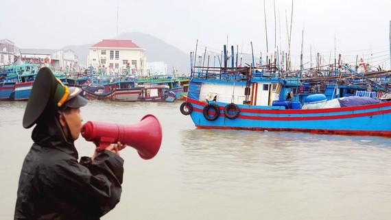 Do ảnh hưởng của áp thấp nhiệt đới, hơn 2.000 du khách tại đảo Lý Sơn