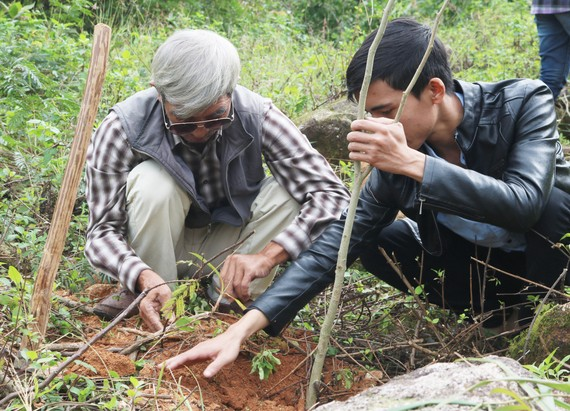 Nhiều doanh nghiệp đã ủng hộ kinh phí trồng cây xanh trên bán đảo Sơn Trà