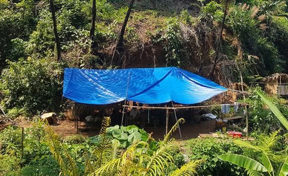 Lán trại một điểm khai thác vàng trên địa bàn huyện Phước Sơn. Ảnh: CQĐT