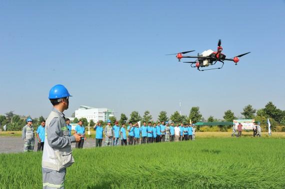 LTG cũng là đơn vị hiện sở hữu nhiều thiết bị bay không người lái lớn nhất Việt Nam, giúp nông dân giảm sức lao động. Ảnh: LTG