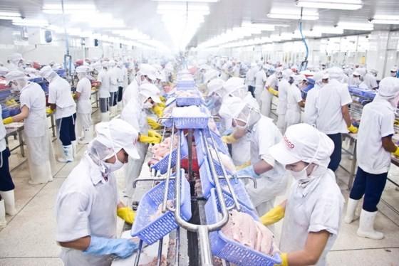 Xuất khẩu thủy sản hướng tới mục tiêu 11 tỷ USD vào năm 2020. Ảnh: Nguyễn Thanh