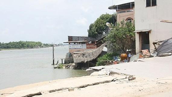 Tình hình sạt lở ở huyện Chợ Mới, tỉnh An Giang ngày càng phức tạp