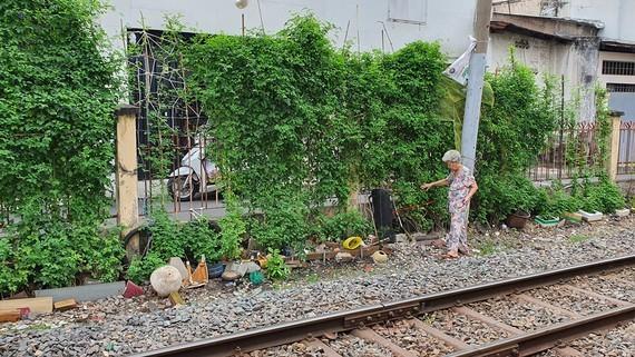 Người dân trồng rau trong khu vực an toàn đường sắt
