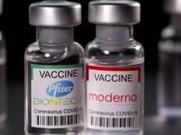 衛生部批准輝瑞新冠疫苗
