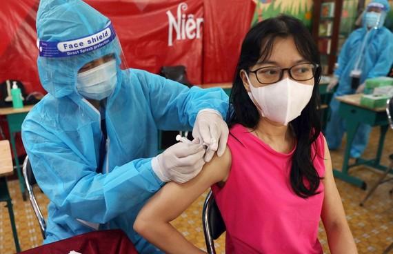 本市正在尋求疫苗取替解決方案