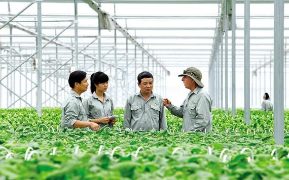 TPHCM đặt mục tiêu đến năm 2025 phát triển 150 hợp tác xã