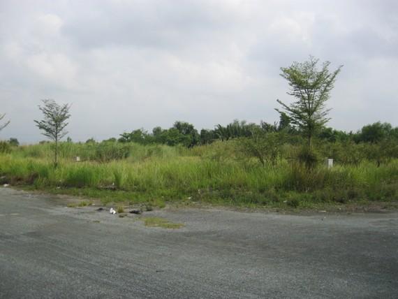 Một khu đất tại Nhà Bè chưa d khai thác sử dụng