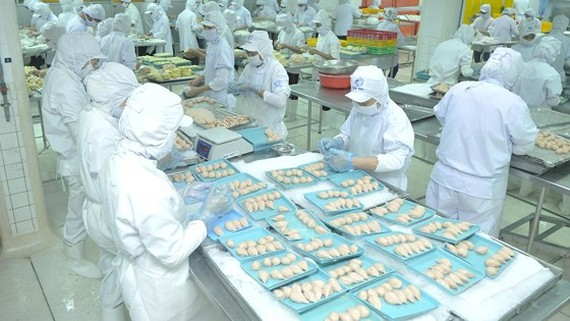 Food processing industry sees the highest number of enterprises shifting investment. (Photo: SGGP)