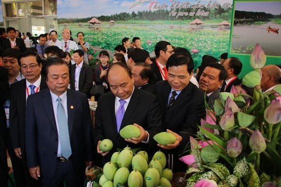 Agriculture is the strength of the Mekong Delta