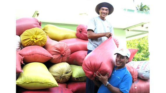 Farmers in the Mekong Delta enjoy a bumper rice crop. (Photo: SGGP)