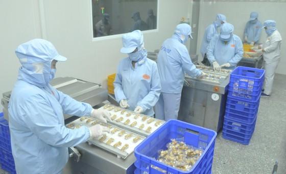 Production at a company in Ho Chi Minh City. (Photo: SGGP)
