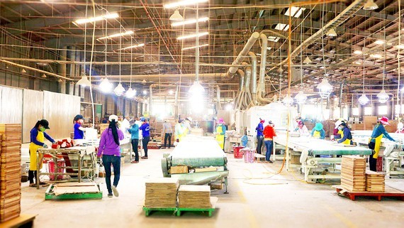 A wood factory processing wooden products for export to the EU in Binh Dinh Province. (Photo: SGGP)