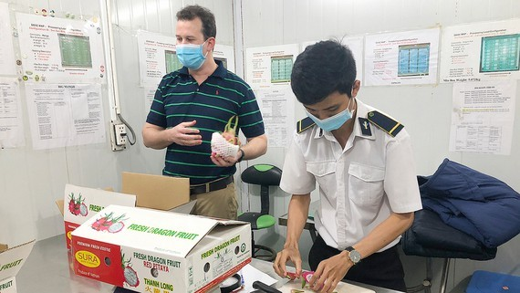 Fresh fruits are checked for residues of plant protection drugs and traced their origin before being exported. (Photo: SGGP)