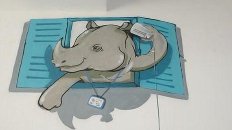 Vẽ tranh tường kêu gọi bảo vệ động vật hoang dã