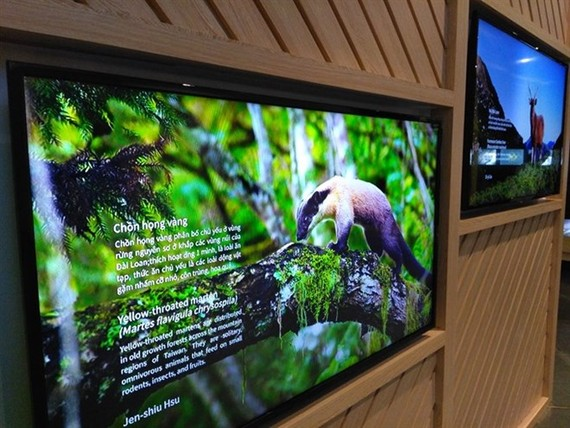 The exhibition helps people get close to nature. (Source: VNA)