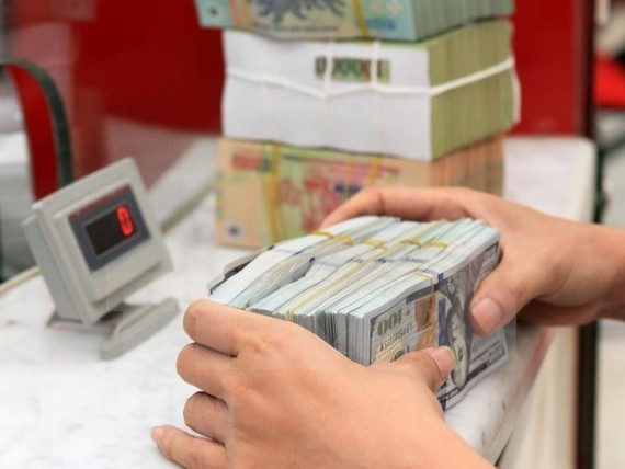 The daily reference exchange rate on July 3 remains unchanged from the previous day at 22,635 VND/USD (Source: VNA)