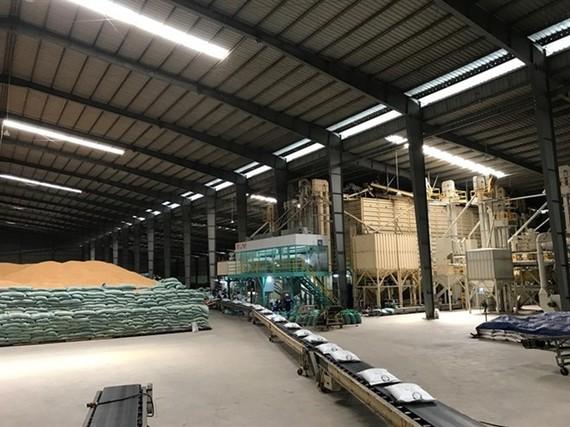 Tan Long's rice processing plant (Photo: VNA)