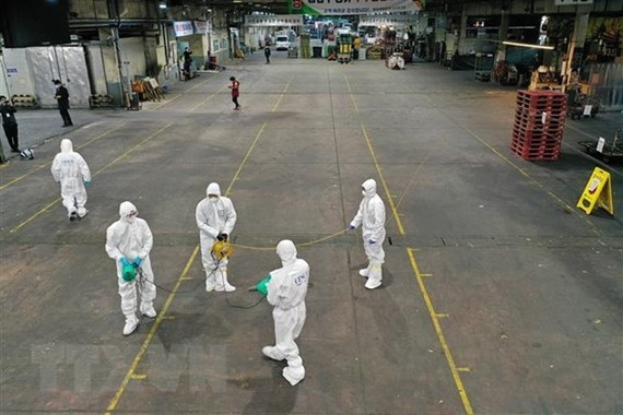 Spraying disinfectants at a vegetable market in Daegu, the Republic of Korea, to prevent the spread of the novel coronavirus disease (COVID-19) on February 20 (Photo: AFP/VNA)
