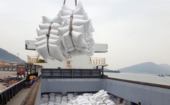 PM approves rice export resumption, orders guaranteed food security
