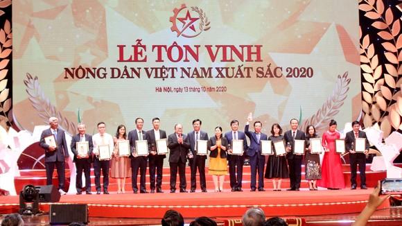 Tuyên dương những nhà nông tiêu biểu Việt Nam 2020 ảnh 2