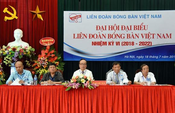 Bóng bàn Việt Nam 'đỏ mắt' tìm thủ lĩnh ảnh 1